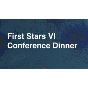 Dinner First Stars VI Conference