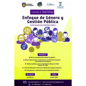 Curso E- Learning Enfoque de Género y Gestión Pública