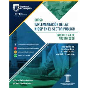 Curso E-L Implementación NICS SP 2020