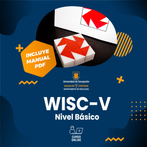 Curso de Wisc -V Nivel inicial