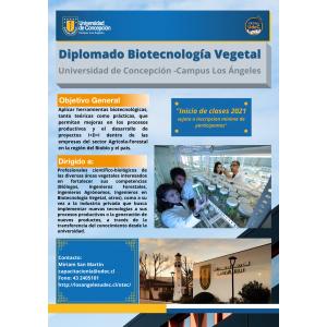 Arancel Diplomado Biotecnologia Vegetal V2021