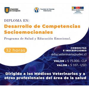Diploma Desarrollo de Competencias Socioemocionales
